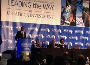Africa Summit 1